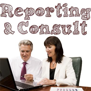 Reporting & Consultation