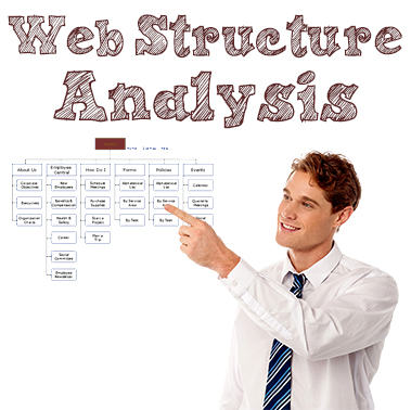 Web Structure Analysis